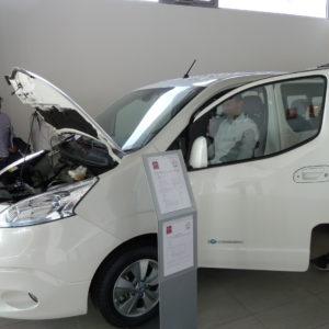 e-buggy-33